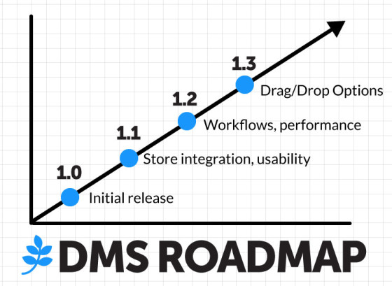 DMS Roadmap Outline