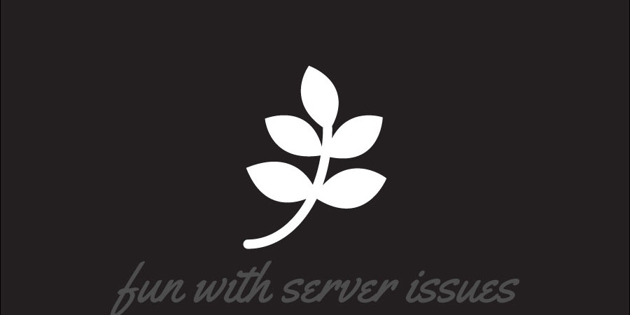 server-issues
