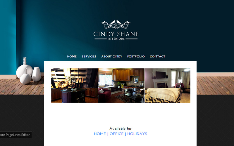 Cindy Shane Interiors